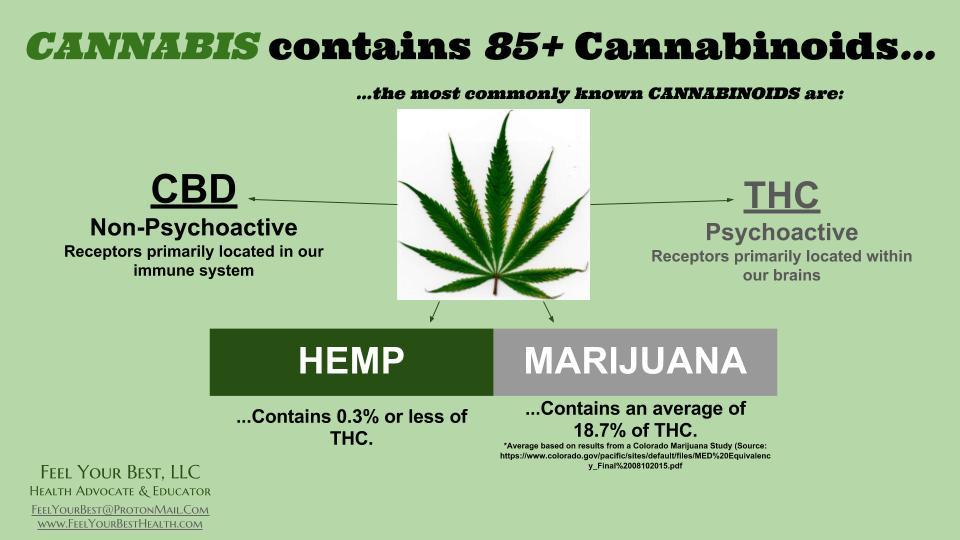 CBD olja vs THC